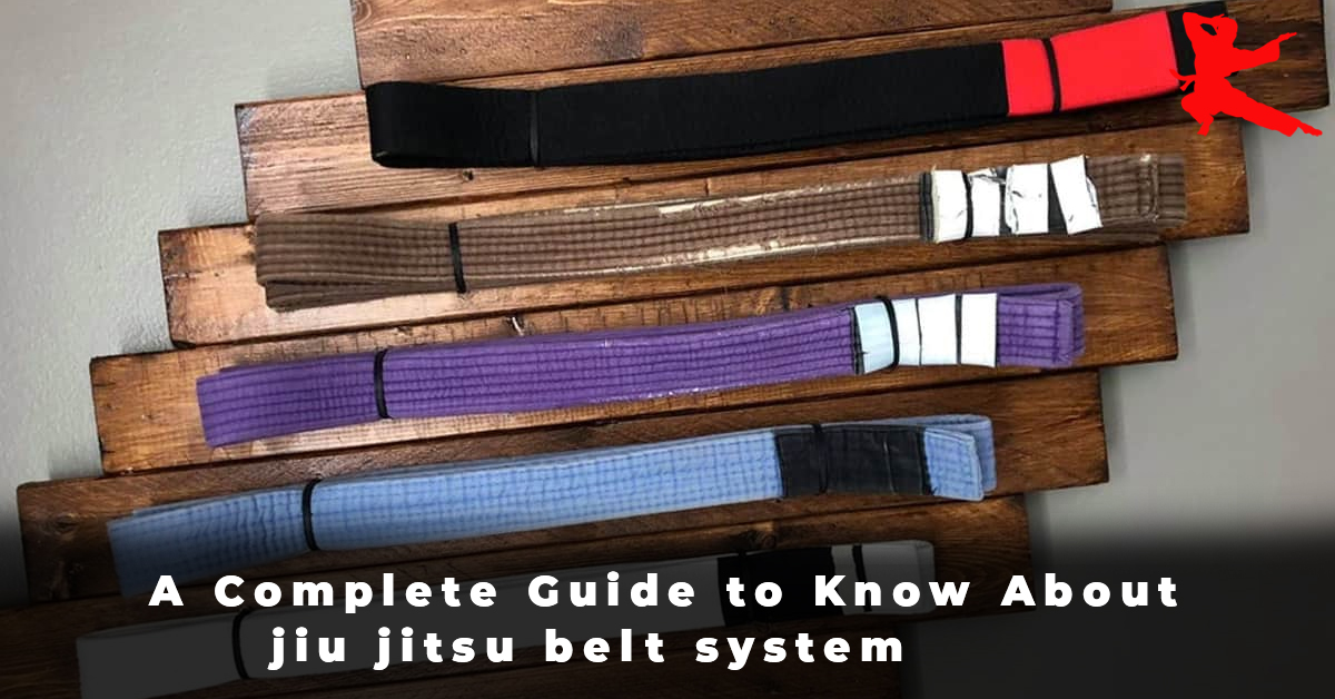 A Complete Guide to Know About jiu jitsu belt system
