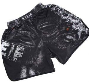 SOTF Muay Thai Fight Shorts.