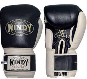 Windy muay Thai training gloves