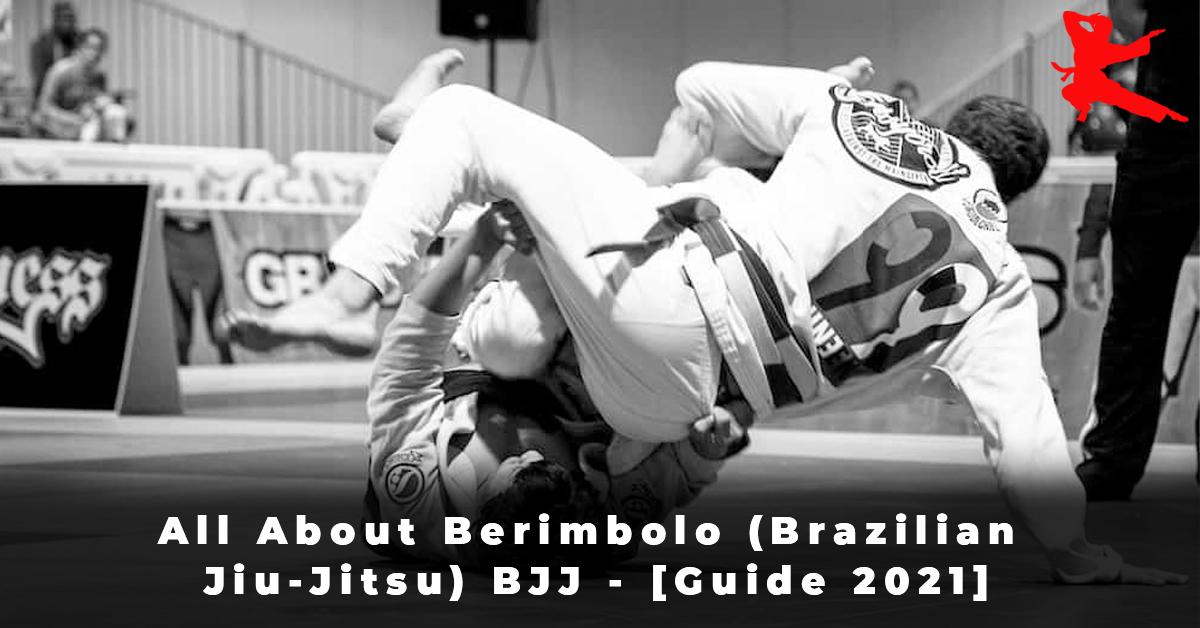 All About Berimbolo (Brazilian Jiu-Jitsu) BJJ - [Guide 2021]